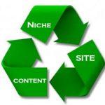 Niche website content
