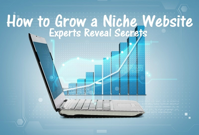 Scaling Your Niche Website